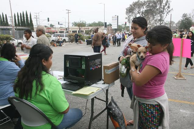 watts dog clinic how one day can make a world of difference