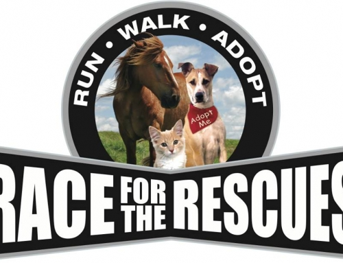 Race for the Rescues is less than a month away!