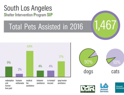 The 2016 numbers for our Shelter Intervention Program are in!